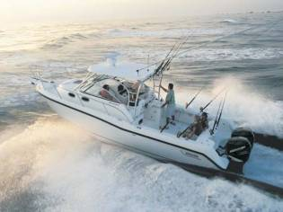 Boston Whaler Conquest 305