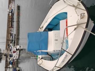 Orca 545
