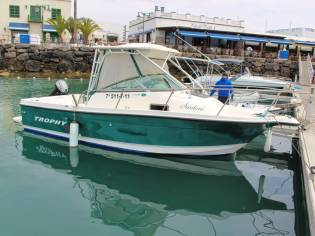 Bayliner trophy 2052 WA