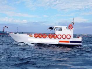 Custom Tourist boat