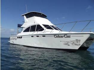 Custom 40ft Power Catamaran