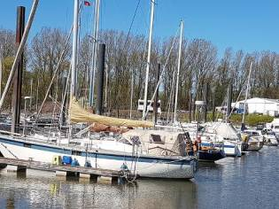 Custom Hanseat 35S