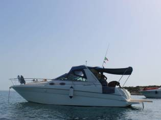 Sea Ray Sundancer 290 DA