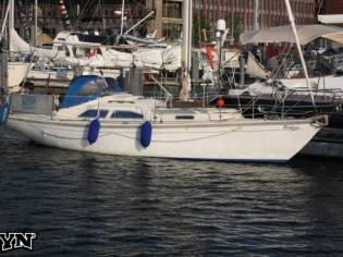 Bianca 31 Commander