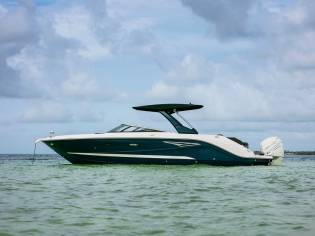 SEA RAY SLX 310 HORS BORD
